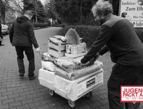 "Jugend-Initiative ""Spenden statt Böllern"" in Aktion"